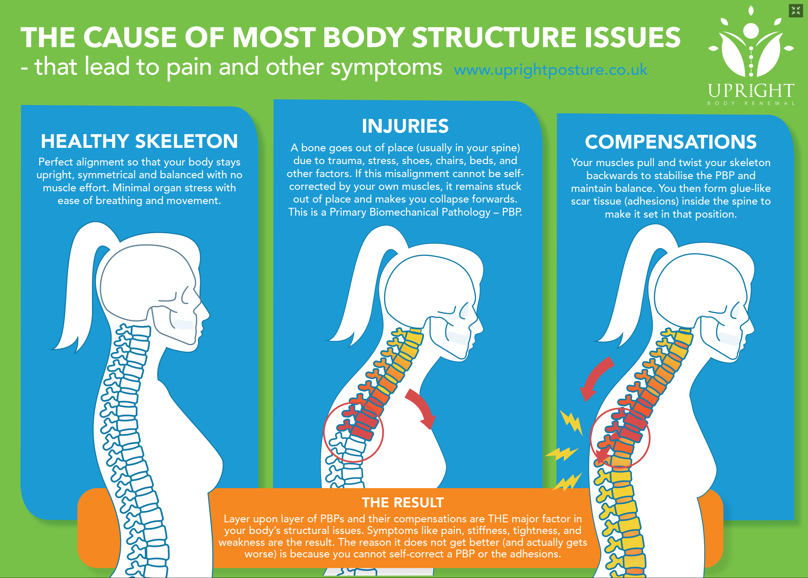 Advanced BioStructural Correction Chiropractic 2